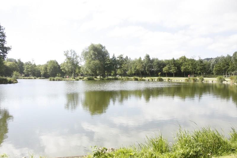 Parc des Aulnes
